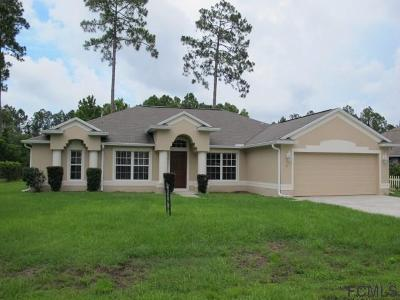 Palm Coast Single Family Home For Sale: 12 Bruce Lane