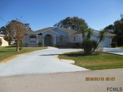 Palm Coast Single Family Home For Sale: 33 Forrester Pl