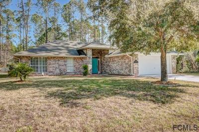 Palm Coast Single Family Home For Sale: 16 Regency Drive
