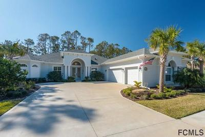 Flagler County Single Family Home For Sale: 42 North Park Cir