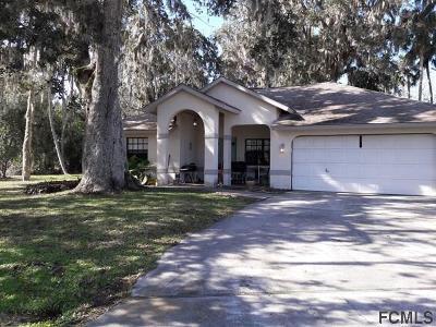 Palm Coast Single Family Home For Sale: 32 Black Hawk Place