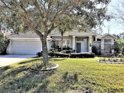 Palm Coast Single Family Home For Sale: 121 Wynnfield Drive