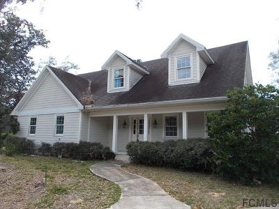 Flagler Beach Single Family Home For Sale: 12 Ivey Lane