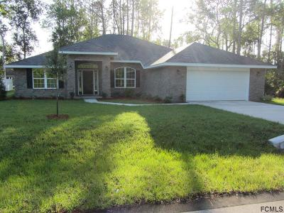 Matanzas Woods Single Family Home For Sale: 24 Lincoln Ln