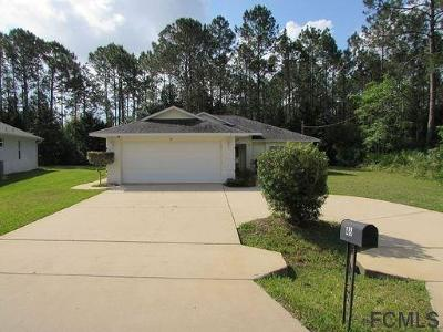 Palm Coast Single Family Home For Sale: 46 Ramblewood Drive