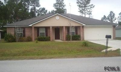 Palm Coast Single Family Home For Sale: 19 Pershing Lane