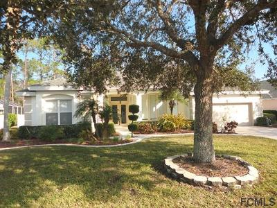 Ormond Beach Single Family Home For Sale: 40 Gale Ln