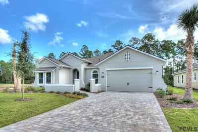 Ormond Beach Single Family Home For Sale: 912 Creekwood Dr