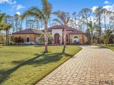 Palm Coast Single Family Home For Sale: 53 Scarlet Oak Circle