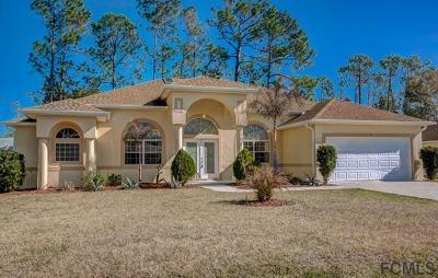 Palm Coast Single Family Home For Sale: 213 Wellington Drive