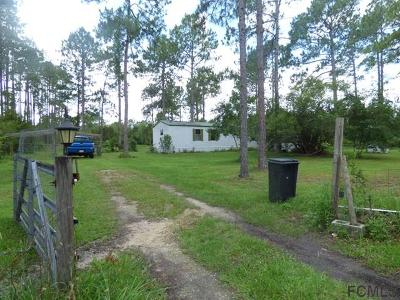 Flagler County Single Family Home For Sale: 6015 Cherry Lane