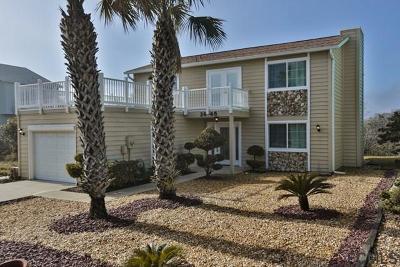 Flagler Beach Single Family Home For Sale: 2648 Central Ave S