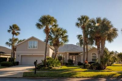 Palm Coast Single Family Home For Sale: 65 Mount Vernon Lane