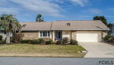 Palm Coast Single Family Home For Sale: 28 Clearview Ct N