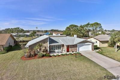 Palm Coast Single Family Home For Sale: 22 Clinton Ct S