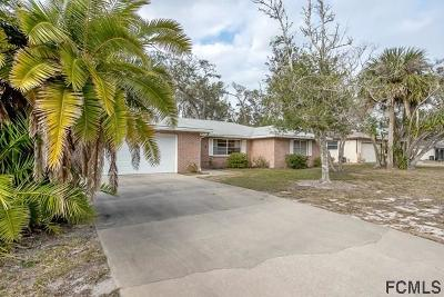 Ormond Beach Single Family Home For Sale: 7 Mary Ann Terr