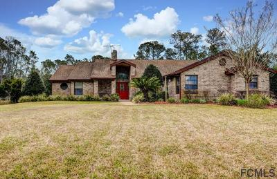 Ormond Beach Single Family Home For Sale: 11 Walnut Ln