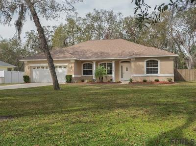 Flagler Beach Single Family Home For Sale: 18 Magnolia St