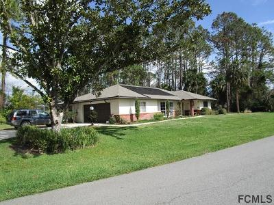 Pine Lakes Single Family Home For Sale: 58 Weber Lane