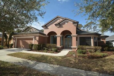 Palm Coast Single Family Home For Sale: 12 Riverbend Drive