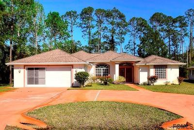 Palm Coast Single Family Home For Sale: 115 Woodside Drive