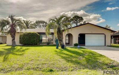 Palm Coast Single Family Home For Sale: 20 S Clinton Ct S