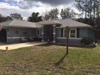 Palm Coast Single Family Home For Sale: 43 Putter Drive