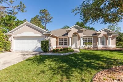 Palm Coast Single Family Home For Sale: 19 White Birch Lane
