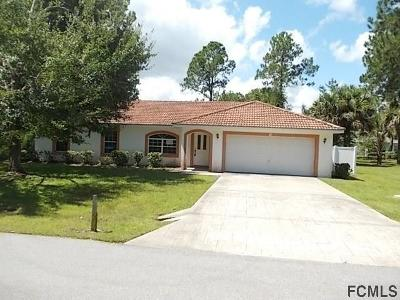 Palm Coast Single Family Home For Sale: 36 Ponce Deleon Dr