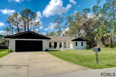 Palm Coast Single Family Home For Sale: 58 Wellstone Drive