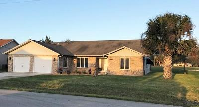 Palm Coast Single Family Home For Sale: 119 Westchester Ln