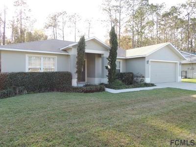 Palm Coast Single Family Home For Sale: 38 Becker Ln
