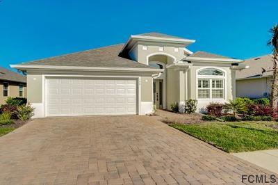 Palm Coast Single Family Home For Sale: 142 Park Place Circle