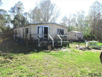 Bunnell Single Family Home For Sale: 4949 Canal Avenue