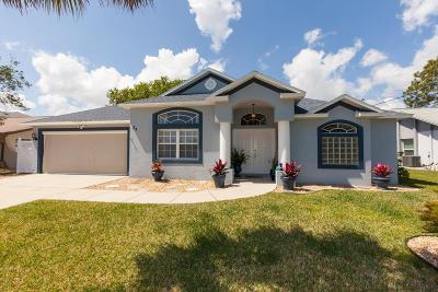 Palm Coast Single Family Home For Sale: 34 Cold Spring Court