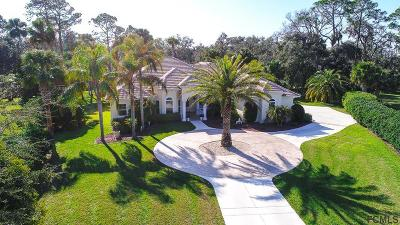 Palm Coast Single Family Home For Sale: 9 Sentry Oak Pl