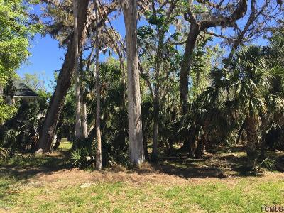 Sugar Mill Plantation Residential Lots & Land For Sale: Audubon Ln