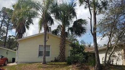 Flagler Beach Single Family Home For Sale: 123 Oak Lane