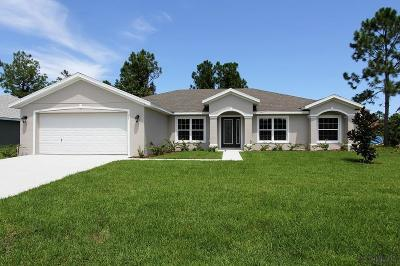Palm Coast Single Family Home For Sale: 53 Frenora Lane