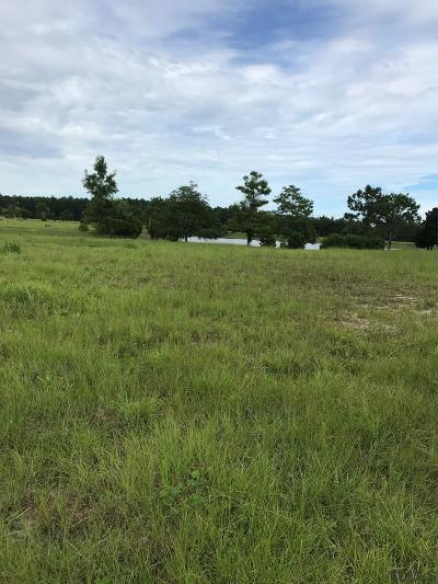 Residential Lots & Land For Sale: 101 Aspen Way