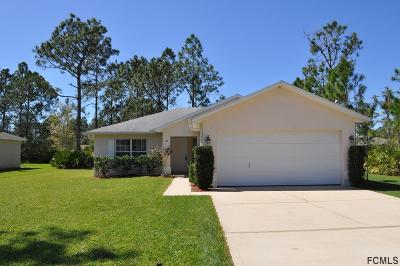 Palm Coast Single Family Home For Sale: 46 Seaton Valley Path