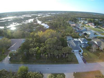 Palm Harbor Residential Lots & Land For Sale: 6 Cayuga Court