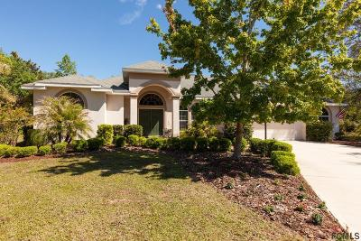 Ormond Beach Single Family Home For Sale: 1462 Dolph Circle