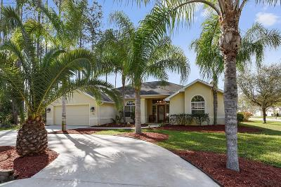 Flagler County Single Family Home For Sale: 65 Esperanto Drive