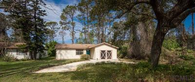 Flagler Beach Single Family Home For Sale: 2341 Leslie Street