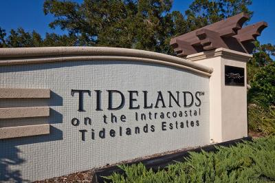 Tidelands Condo/Townhouse For Sale: 45 S Riverview Bend #1917