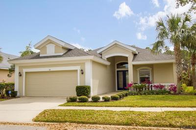 Palm Coast Single Family Home For Sale: 20 Oasis Circle