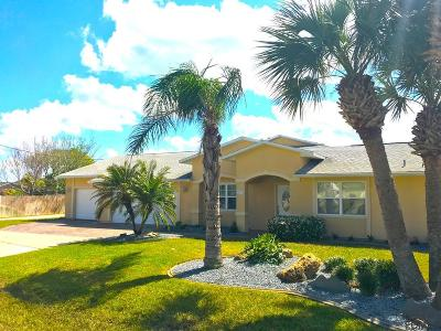 Flagler Beach Single Family Home For Sale: 131 Palm Circle