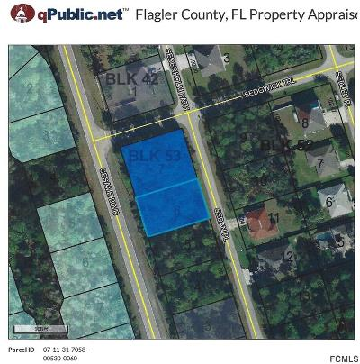 Palm Coast, Flagler Beach Residential Lots & Land For Sale: 4 Sedan Place