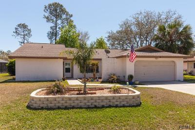 Palm Coast Single Family Home For Sale: 27 Folson Lane